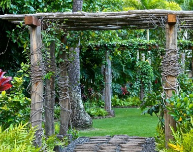 Give Your Backyard an Overhaul with These Tips
