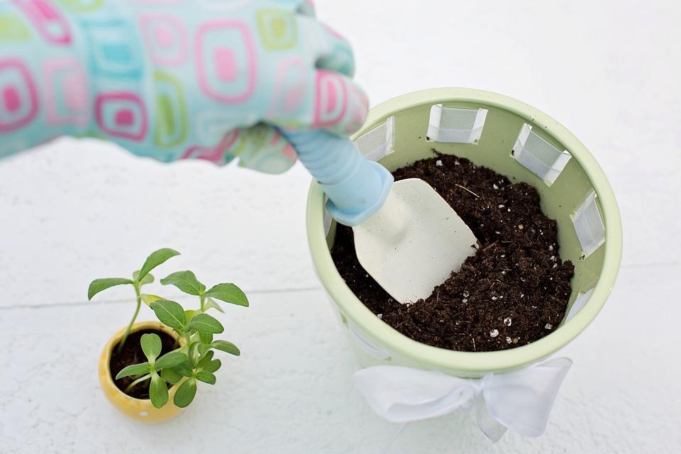 planting-783342_960_720