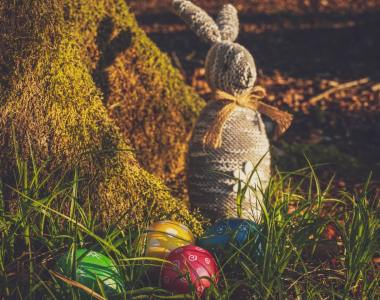 Celebrating Easter through Egg Hunting