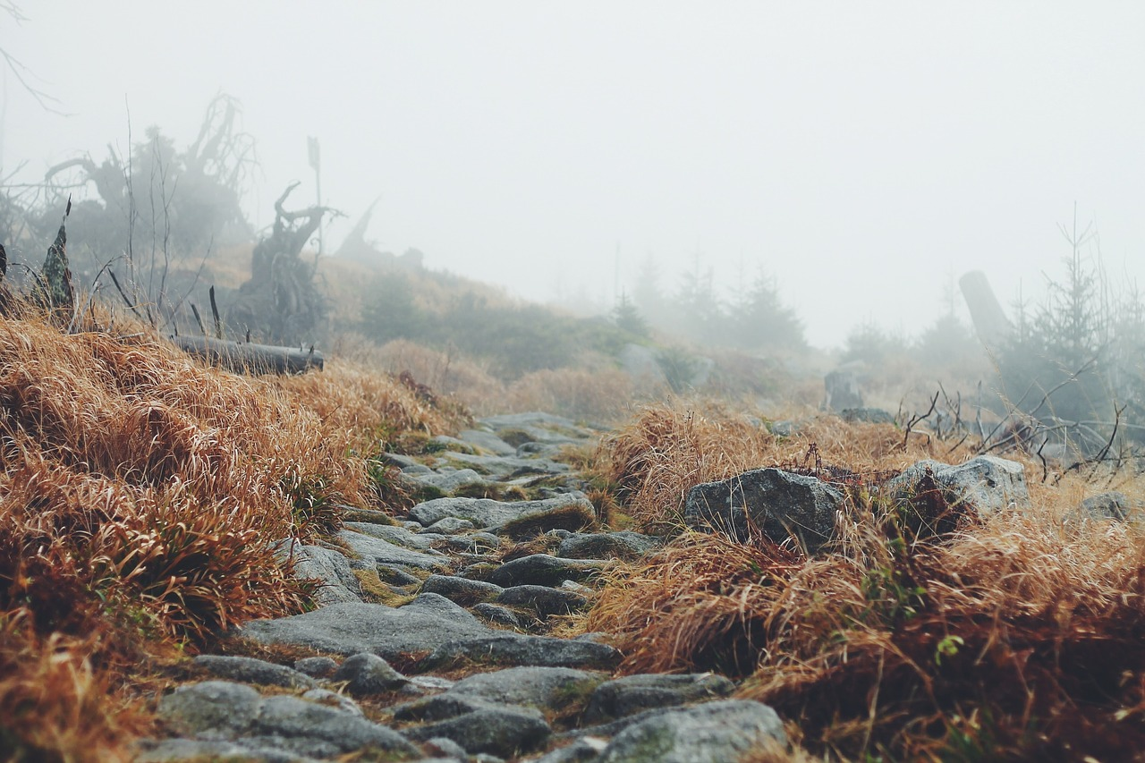landscape-691150_1280