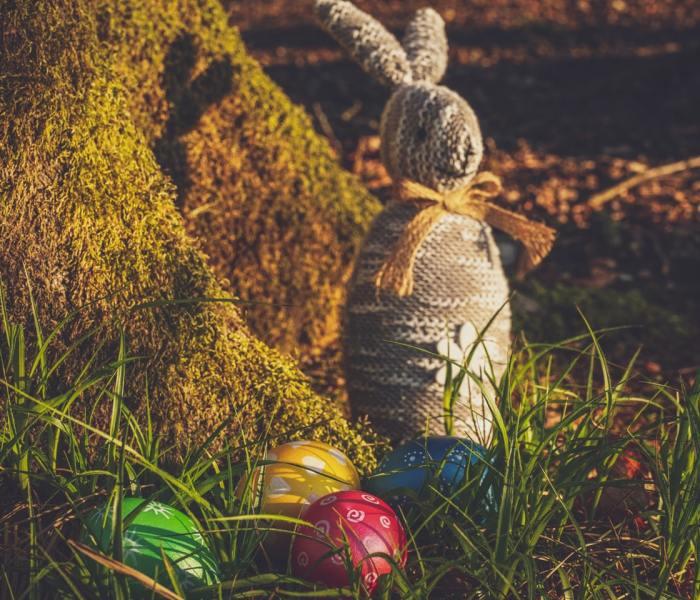 Celebrating Easter through Egg Hunting
